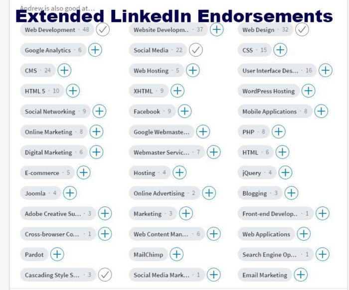 LinkedIn SEO Extra Endorsements